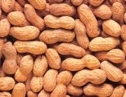 1280_Peanuts
